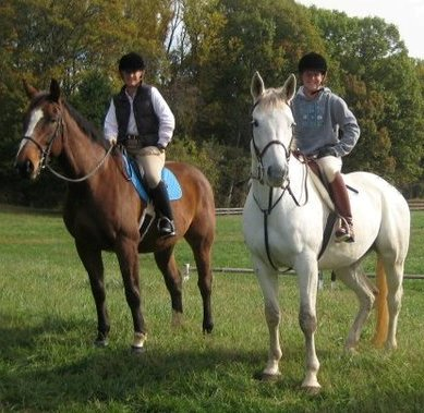 Get Your Horse Fix Equestrian Events In The Roanoke