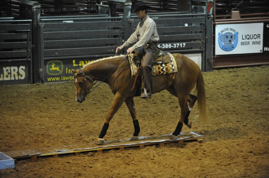 GET YOUR HORSE FIX: Equestrian events this weekend near Roanoke, Va. (April 11-12)