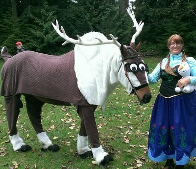 10. Everyoneu0027s favorite reindeer (after Rudolph of course.) & Headed for a costume class? 10 horse Halloween costume ideas ...