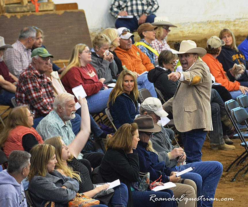 Market for well-broke horses remains strong at the Great American Trail Horse Competition and Sale