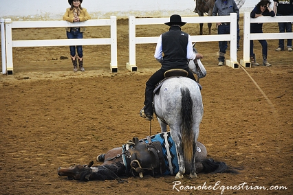 A roan pony lies on the ground while a horse was sidepassed over him and a bullwhip cracked over his body.