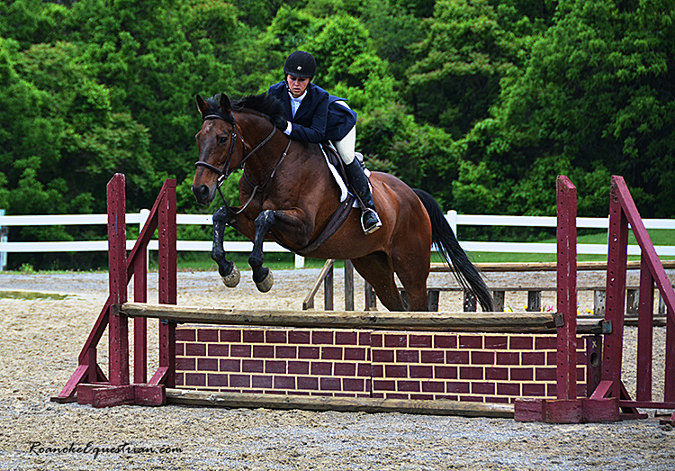 Cross View opens 2016 horse show series