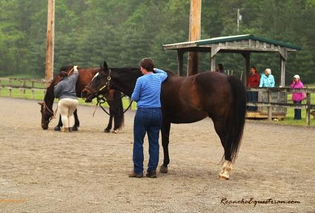 Gabi Hooten works with her horse.