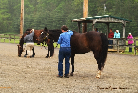 Gabi Hooten works with her horse.