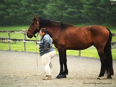 Tamla Nichols listens to George Schaefer speak on natural horsemanship techniques.