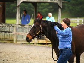 Gabi Hooten works with her horse during the morning ground session.