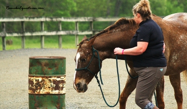 A participant works on moving her horse's forehand.