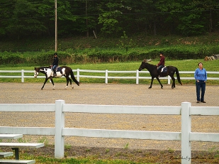 Dressage session