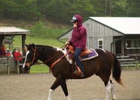 Mounted Natural Horsemanship