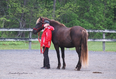 Judy Sanders listens during the afternoon session of Natural Horsemanship.
