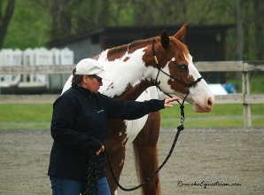 JoAnn Dester works with her horse.