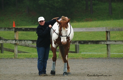 JoAnn Dester asks her horse to give.