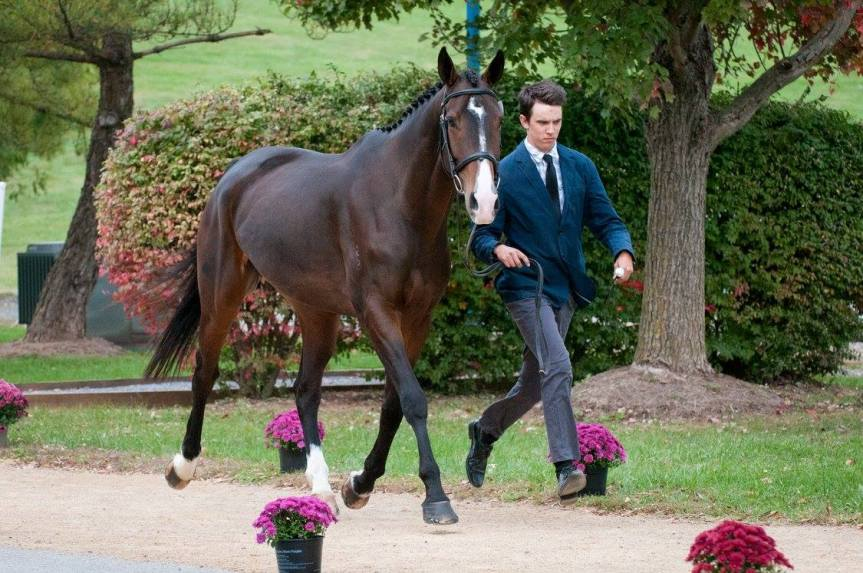 Virginia Horse Trials under way at Virginia HorseCenter