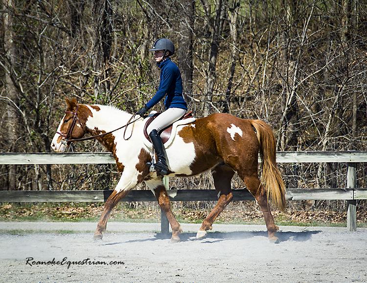 Kari Estes won the open equitation.