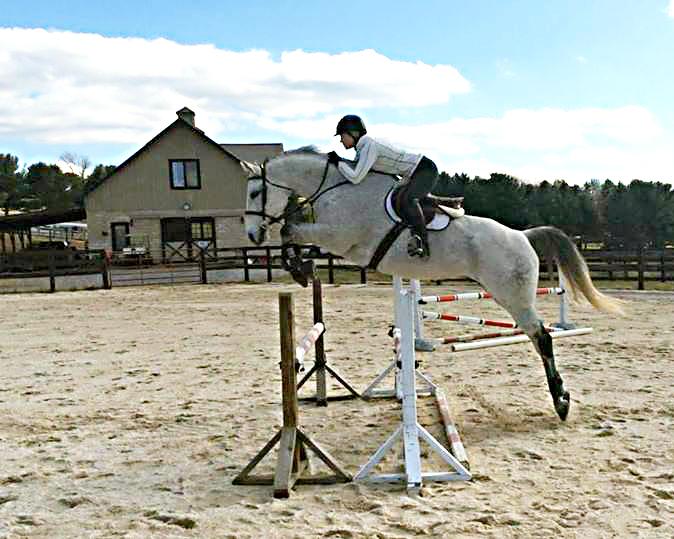 Djuricsporthorses