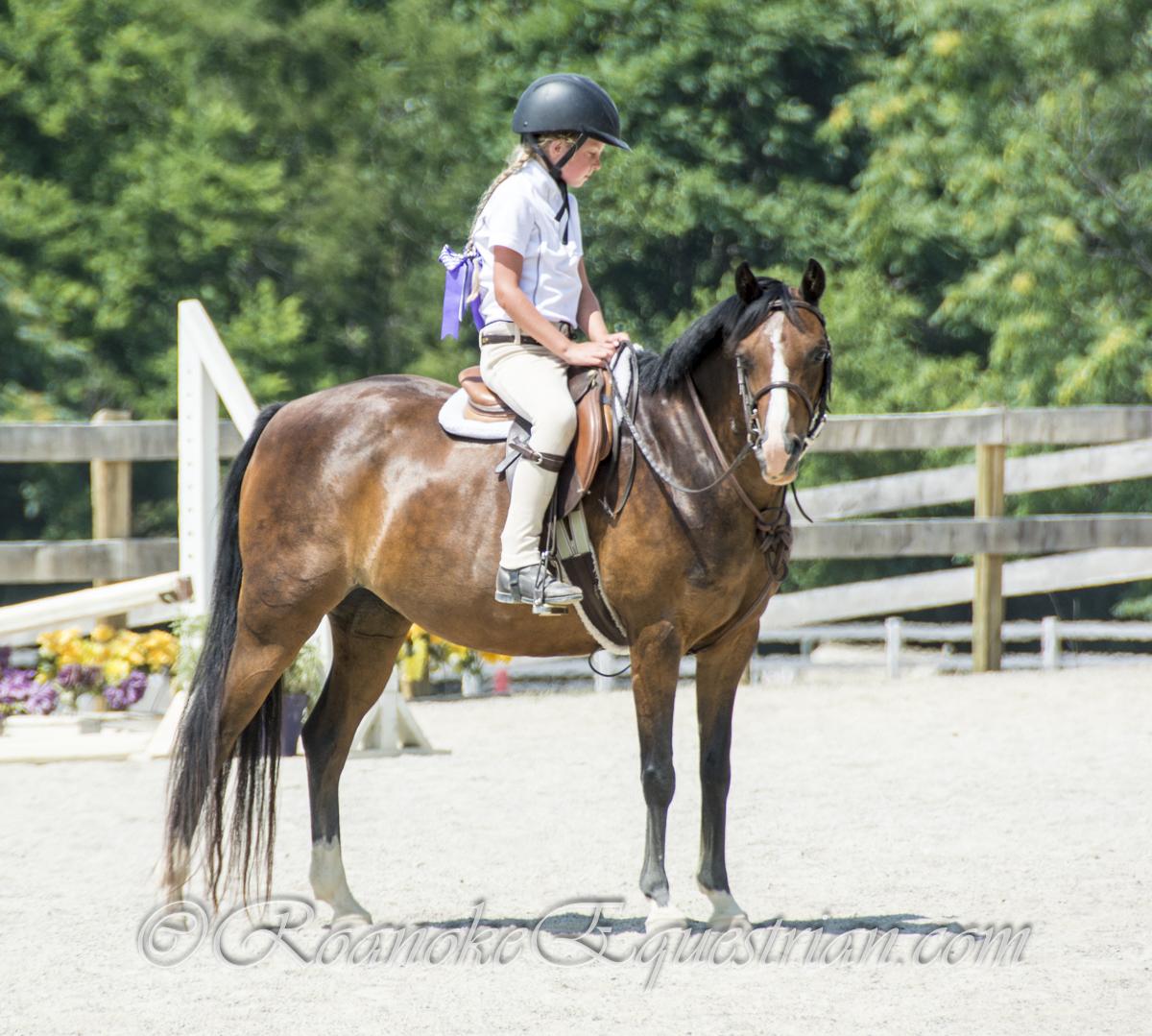 2019 Calendar Roanoke Equestrian