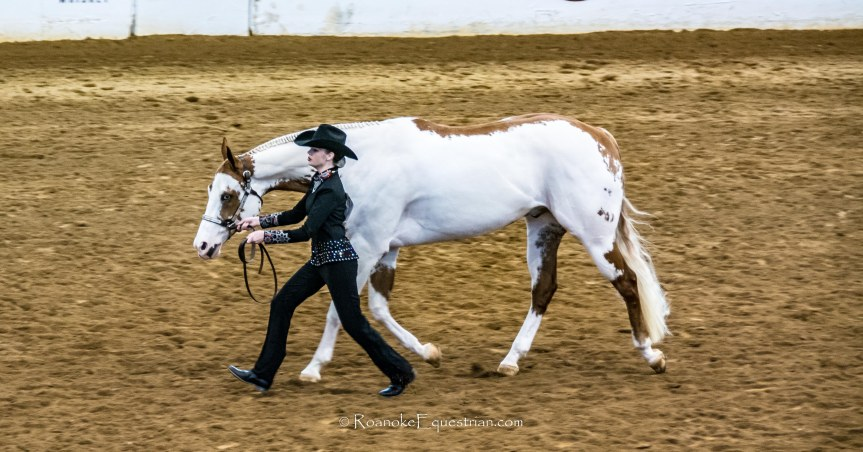 APHA Eastern National Championship entries give hope for growth ofseries