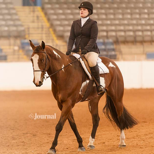 Inaugural APHA Eastern National Championship draws big dreamers to Virginia