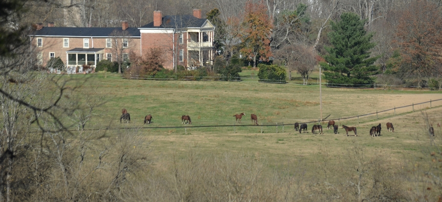 Old historic brick home with pastures with horses in the foreground